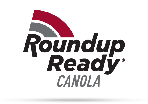 Roundup Ready Winter Canola
