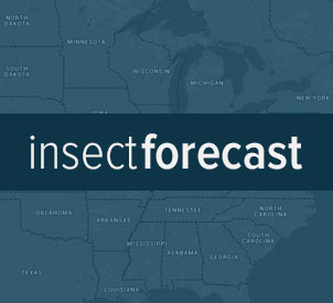 Insect Forecast