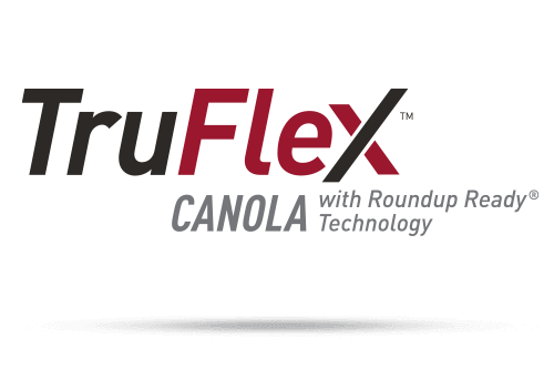 TruFlex Canola with Roundup Ready Technology